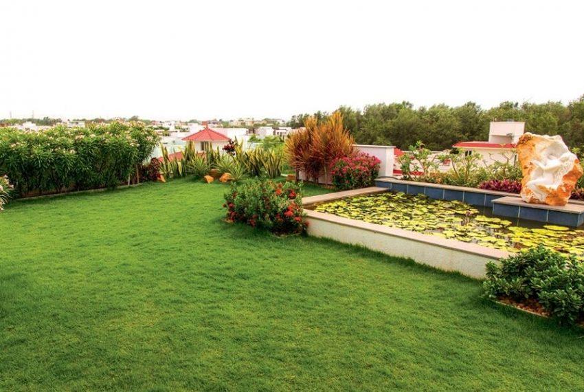 Landscaped-Garden