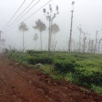 kotagiri land for sale