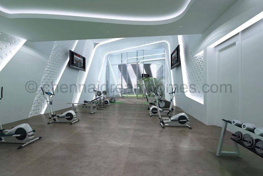 swanky-gym