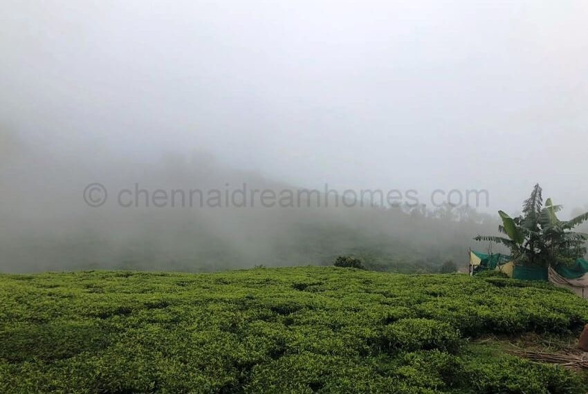 kotagiri plots for sale (2)