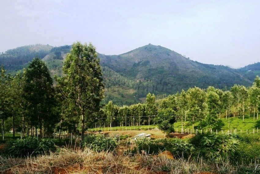 Plots-for-sale-kotagiri (10)