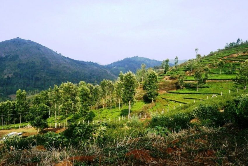 Plots-for-sale-kotagiri (8)