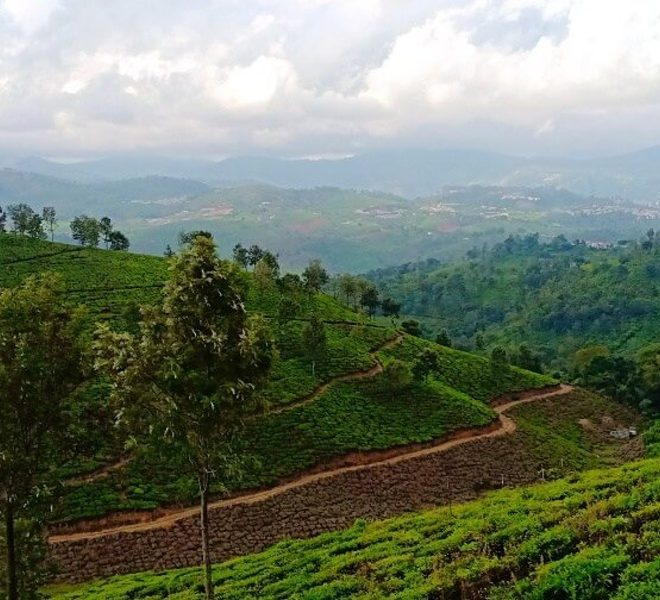 land for sale in coonoor