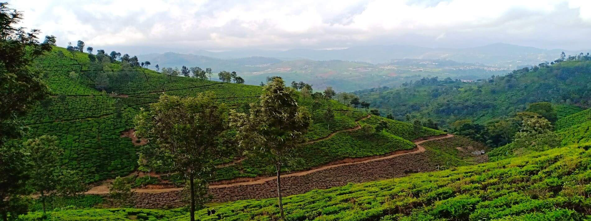 Gated Layout Plots in Coonoor with Fantastic views