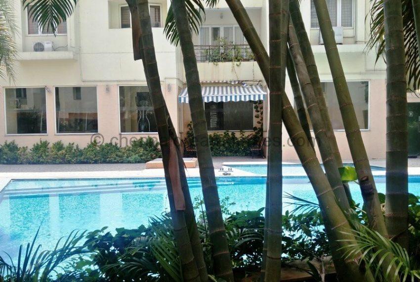 pool-garden-view