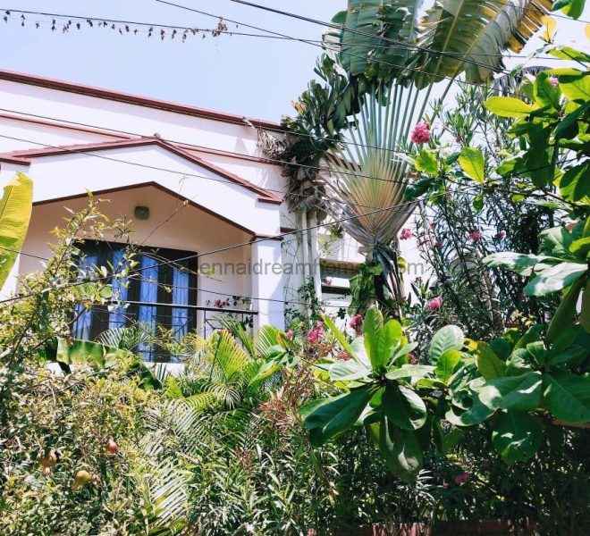 Individual House for Rent in ECR